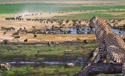 4 Days Masai Mara and Lake Nakuru Safari Holiday