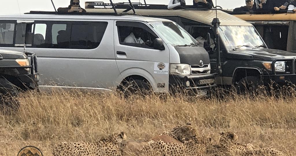 Best Time to Visit Masai Mara Africa