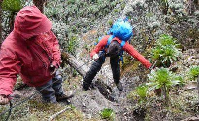 Rwenzori Mountain Trekking