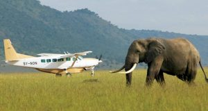 flights to Masai Mara National Reserve
