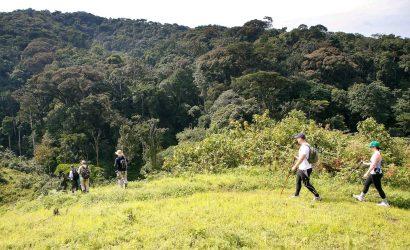 4 day gorilla and hiking safari Uganda